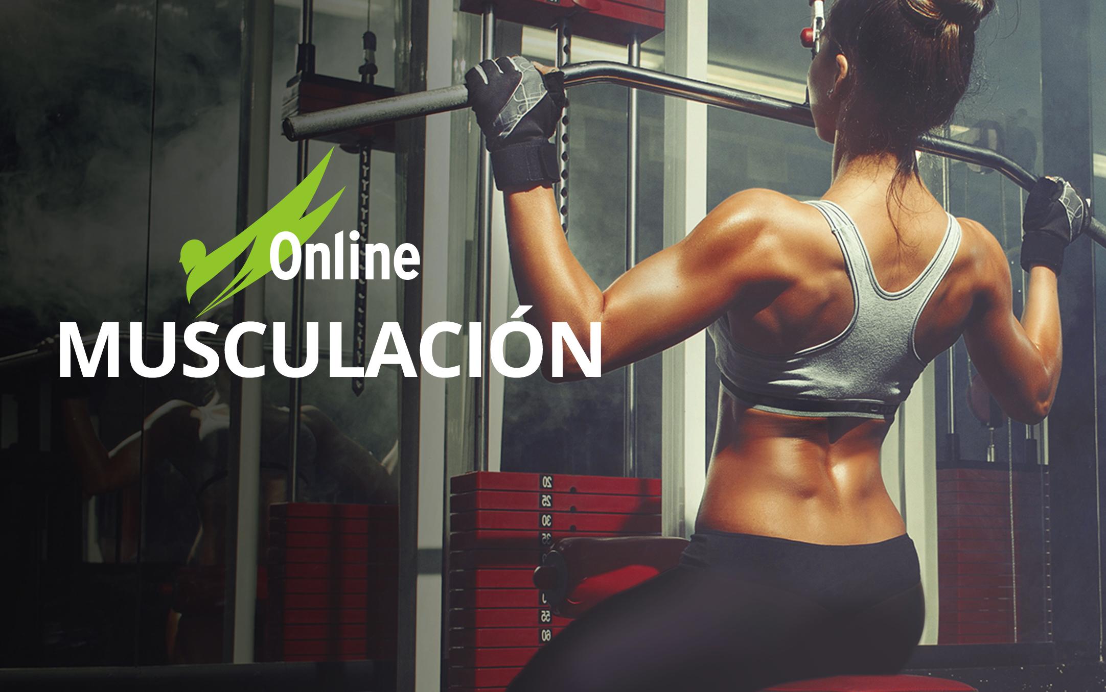 Acondicionamiento Físico en Musculación